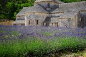 Une formation de wedding planner à Montpellier !